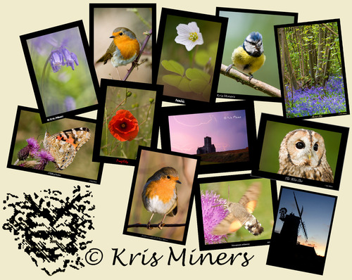 kris miners photography